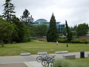 courtyard 2 med